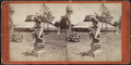 'Hollywood,' Long Branch, from Robert N. Dennis collection of stereoscopic views 11.png