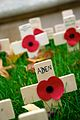 'Lest we forget' - from Remembrance Sunday.jpg