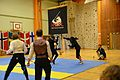 Örebro Open 2015 83.jpg