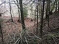 Überreste der Abschnittsbefestigung Puch 04.jpg