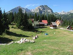 %C5%A0ibali%C4%87ev kamp u Ivan Do, %C5%BDabljak - panoramio