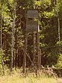 Żwakowski las. - panoramio (2).jpg