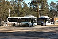 Автобусы Курорт 3.jpg