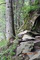 А це скелі біля джерела.jpg