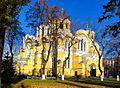 Владимирский собор - panoramio.jpg
