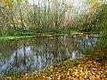 Вінничина, Муровані Курилівці парк Жван 10.jpg