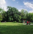 Дитячий маданчик у парку Нивки.JPG