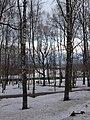 Кировский парк - panoramio (1).jpg