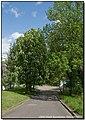 Корсунь-Шевченківський, весна 16.jpg