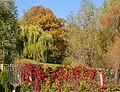 Національний ботанічний сад імені Миколи Гришка НАН України 010.jpg