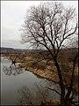 Павловская Слобода. Река Истра - panoramio.jpg