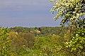 Панорама колишнього маєтку в Сутисках. Погляд від села Шершні IMG 8784.jpg
