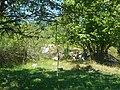 Планина Озрен (14).jpg