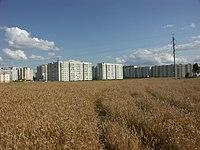 Поле на улице Рафиева..jpg