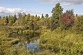 Река Прость MG 5040.jpg