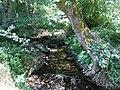 Река Соленица.jpg