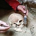 Розкопки скіфського вояка.jpg