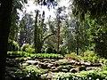 Рубенский парк Rubenes parks (16) - panoramio.jpg