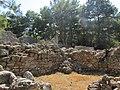 Руины около агоры. Фаселис. Кемер. Турция. Июнь 2012 - panoramio.jpg