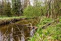 Річка Замишівка 01.jpg