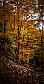 Споменик природе Кањон ријеке Дубоке - водопад Скакавац 6.jpg