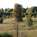 Южная граница Коми-Пермяцкого округа - panoramio (2).jpg