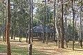 อุทยานแห่งชาติทุ่งแสลงหลวง Thung Salaeng Luang National Park - panoramio - Thaweesak Churasri (1).jpg