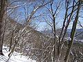三つ峠 - panoramio.jpg