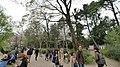 井の頭公園 - panoramio (52).jpg