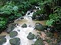 大屯瀑布上游磺溪下雨中的水流.jpg