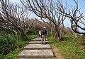 獅頭山公園 - panoramio.jpg