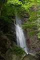 金剛の滝 - panoramio.jpg