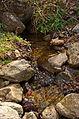 0111 - Nordkorea 2015 - Sinhuangsan - Fluss aus Stein (22343709374).jpg