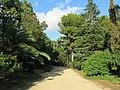03 Jardins del palau de Pedralbes (Barcelona).jpg
