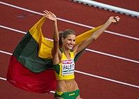 0750 palsyte vlag (28434944202).jpg