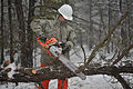 106th Civil Engineering Squadron conducts wildfire and storm debris removal training 150305-F-SV144-133.jpg