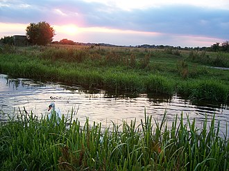 Doxey Marshes - Image: 1170July 2005 105