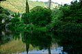 150510 183112 Giardino di Ninfa.jpg