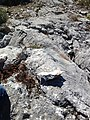 16980 Erenler-Orhaneli-Bursa, Turkey - panoramio (38).jpg