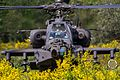 16th CAB, 2-2 SBCT conduct battalion-sized air assault training at JBLM 160427-A-PG801-005.jpg