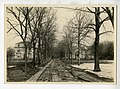 1890s Francis Ave Cambridge Historical Commission Massachusetts US 41193031151.jpg