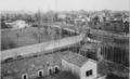 1913 Konia.png