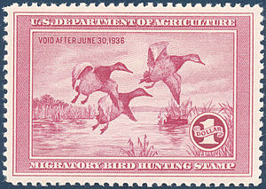 Frank Weston Benson - 1935 U.S. migratory bird hunting stamp based on Benson's work