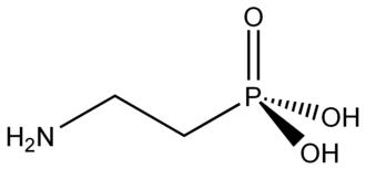 Phosphonate - 2-aminoethylphosphonic acid: the first identified natural phosphonate.