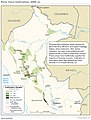 2006 Peru Coca Cultivation (30249835523).jpg