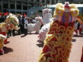 2008 Olympic Torch Relay in SF - Lion dance 42.JPG