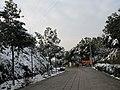 2010年12月15日夜里的那场雪 - panoramio (19).jpg