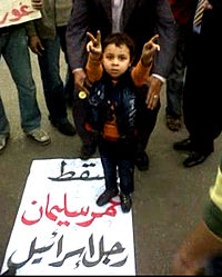 2011 Egypt protests - child on Down with Omar Suleiman sign.jpg