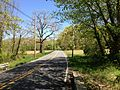 2013-05-04 13 16 48 View east along Meadowbrook Road on the border of West Windsor and Robbinsville Townships, New Jersey.jpg