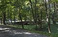 2014 Tarnobrzeg, Zamek Tarnowskich, park, 06.JPG
